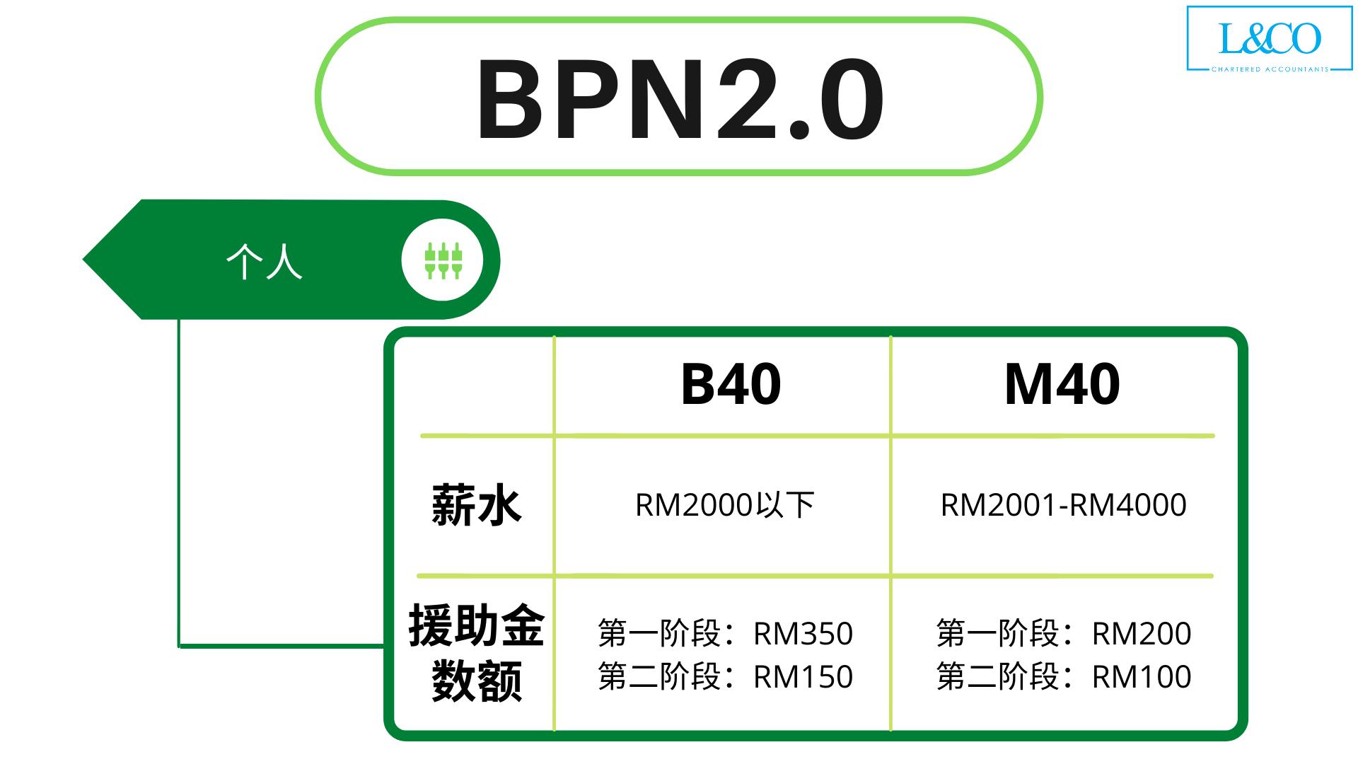 BPN2.0 单身类别申请详情